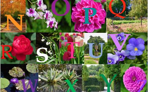 Gardener's Alphabet
